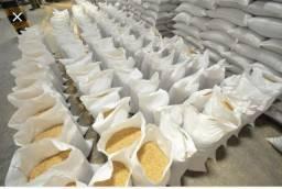 Vendo milho ensacado de 50 kg