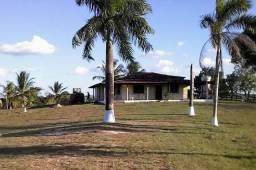Fazenda de 1320 Tarefas no Maranhão