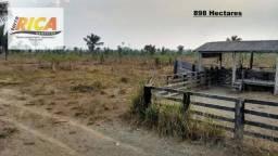 Fazenda à venda com 898 Hectares em Itapuã do Oeste/RO