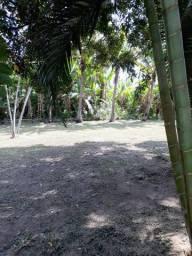 Terreno em ponta negra , maricá, bairro bananal