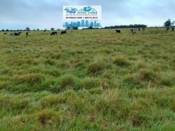 Excelente Fazenda pronta para trabalhar com 639 hectares