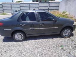 Siena elx