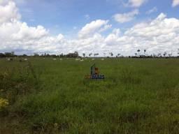 Fazenda à venda, por R$ 4.500.000 - Centro - Alta Floresta D'Oeste/RO