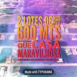 RARIDADE - 2 lotes 300 mts = 600 mts