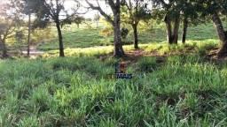 Sítio à venda, por R$ 1.400.000 - Zona Rural - Rolim de Moura/RO