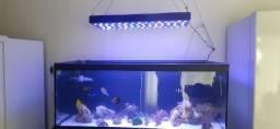 Luminária aquário marinho 216 watts com controladora