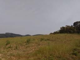 Terreno para Soja em Mandirituba - PR