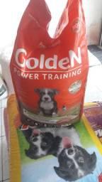 Goldem power training