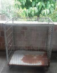 Gaiolao para criação e contenção de cães ,gatos e outros.