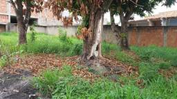Terreno para alugar em Guaratingueta