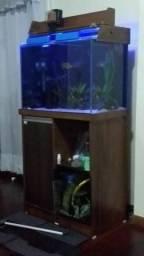 Aquario com móvel vidro 70x 50x 40 140 litros