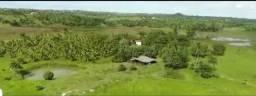 Terreno cascalheira 118.000m sitio ou Haras top