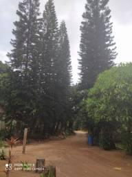 Vendo chácara no centro de Marechal Floriano