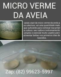 Starts de Micro vermes
