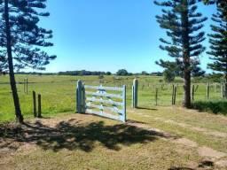 Fazenda de 10 alqueires ou seja 48.000 hectares em Cabo frio - RJ