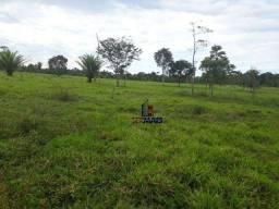 Sítio à venda, por R$ 2.660.000 - Zona Rural - Ariquemes/RO