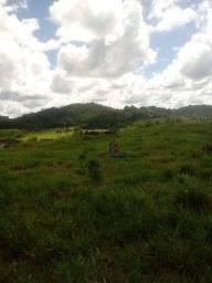 Fazenda à venda, por R$ 4.635.000 - Zona Rural - Cacaulândia/RO