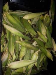 Milho verde promoção urgente