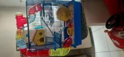 Vende-se casal de hamster e acessórios
