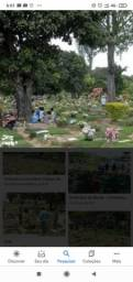 JAZIGO PARQUE DAS FLORES