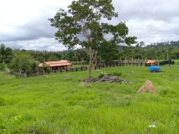 Fazenda- 70 alqueires formados e 200 totais
