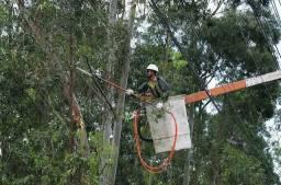 Poda e corte de árvores residencial e empresarial.