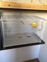 Criadeira de pássaros