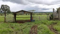 Sítio com 1 dormitório à venda, por R$ 650.000 - Zona Rural - Alvorada D'Oeste/RO