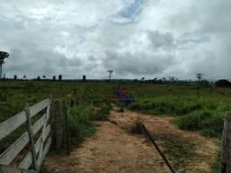 Fazenda com 1 dormitório à venda, por R$ 13.680.000 - Zona Rural - Nova Mamoré/RO