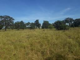 Fazenda de 398 alqueires em Nova Crixás