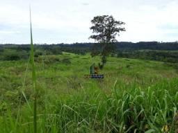 Fazenda à venda por R$ 9.234.000,00 - Zona Rural - Alta Floresta D'Oeste/RO