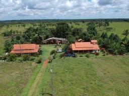 Fazenda à venda, 115 Alqueires - Centro - Seringueiras/RO