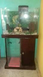 Vendo esse aquário com todos acessórios bomba filtros de água