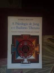 Livro a psicologia de jung e o budismo tibetano comprar usado  Colombo