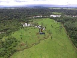 Sítio à venda, Zona Rural - Machadinho D'Oeste/RO