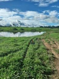 Fazenda à venda, por R$ 6.737.500 - Zona Rural - Cacaulândia/RO
