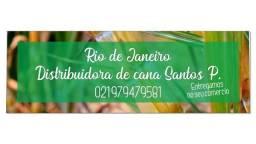 Cana _de _açúcar