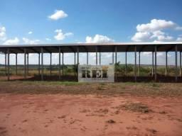 Galpão para alugar, 1500 m² por R$ 8.000,00/mês - Zona Rural - Rio Verde/GO