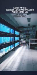 Aquários e acessórios para aquarismo