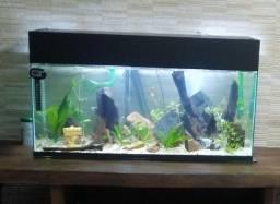 aquario 90L