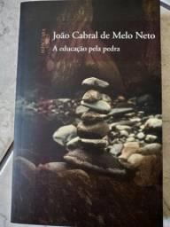 Livro A Educação Pela Pedra