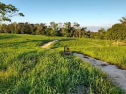 Sítio à venda por R$ 1.680.000 - Área Rural de Porto Velho - Porto Velho/RO