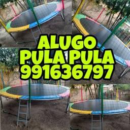 ALUGO PULA PULA
