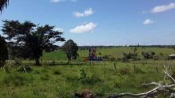 Fazenda à venda,  m² por R$ 35.000.000,00 - Centro - Alta Floresta D'Oeste/RO