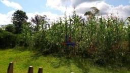 Sítio à venda, por R$ 390.000 - Zona Rural - Machadinho D'Oeste/RO