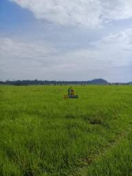 Fazenda à venda, 6700000 m² por R$ 10.000.000,00 - Zona Rural - Guajará-Mirim/RO