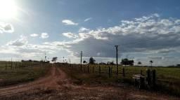 Fazenda em Castanheira MT - Confira