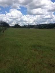 Area de terra 3 hectares - aceita veiculo como parte do pagamento