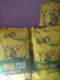 Promoção de sementes para pastagens