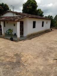 10 hectares em flexeiras com casa